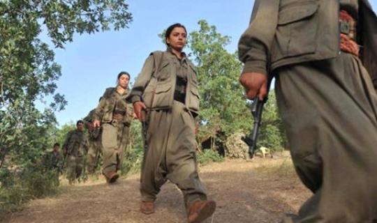 Tunceli'deki Operasyonda Öldürülen Teröristlerden Biri Bölge Sorumlusu Çıktı!