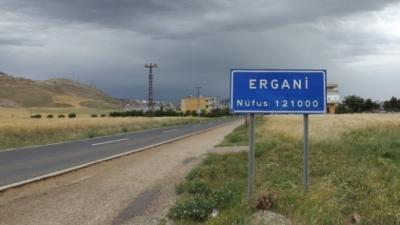 Diyarbakır'da Kuduz Eşek Kadın Ve Çocuğu Isırdı! Köy Komple Karantina Altına Alındı