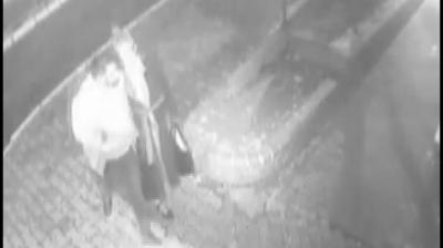 İstanbul'da Dehşet Anlar! Bıçakla Tehdit Ettiği Kadını Parka Götürüp Tecavüz Etti