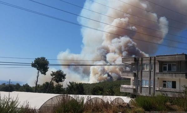 Antalya Cayır Cayır Yanıyor! Yangın Hızla Büyüdü