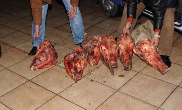 """At Eti Sattıkları İddia Edilen Şüphelilerden İğrenç Savunma: """"Kendimiz Yedik"""""""