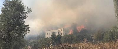 Bodrum'da Büyük Yangın! Havadan Ve Karadan Söndürme Çalışmaları Devam Ediyor
