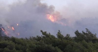 Datça'da 2 Ayrı Bölgede Orman Yangını Çıktı! Sabotaj İddiaları Güçlendi
