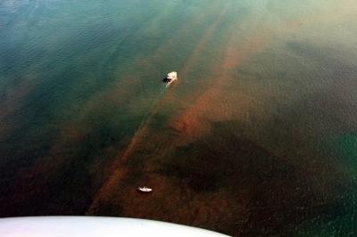 Fethiye Körfezi Çamura Büründü! Deniz Trafiği 3-4 Yıla Son Bulacak