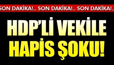 HDP Gaziantep Milletvekili Mahmut Toğrul'a Hapis Şoku
