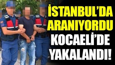 İstanbul'da Aranan FETÖ Şüphelisi Kocaeli'de Yakalandı