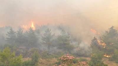 İzmir'de Büyük Orman Yangını! Bölgede Elektrik ve Sular Kesildi