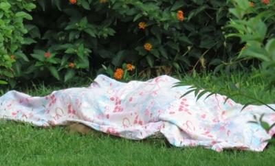 Kadıköy'de Sır Solu Ölüm! Kız Arkadaşının 7. Kattaki Evinden Bahçeye Düştü