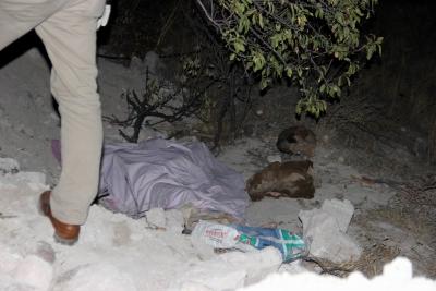 Kayseri'de Şok Olay! Yavru Köpeğin Havlaması Korkunç Gerçeği Ortaya Çıkardı