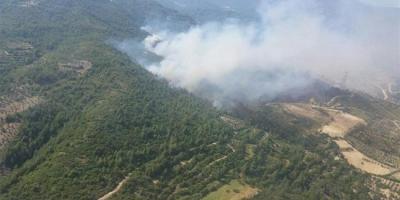 Kütahya'da Rüzgar Felaketi! Ormandan Yeniden Alevler Yükselmeye Başladı