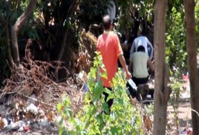 Turizm Kentinin Göbeğinde Bonzai Felaketi